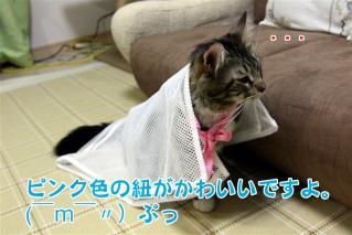 ジャガー洗濯ネット6