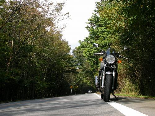 004_convert_20111009173722.jpg
