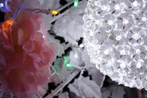 035_convert_20111119194900.jpg