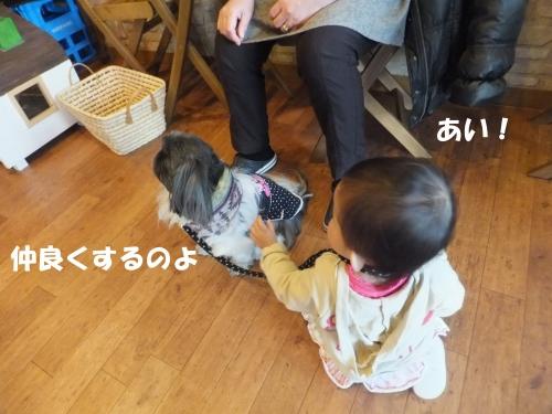 BLG-DSC120212169_edited-1.jpg