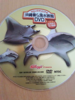 美ら海水族館DVD
