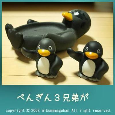 ペンギン3兄弟