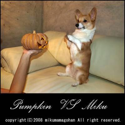 かぼちゃにください。