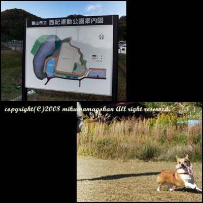 篠山市西紀運動公園