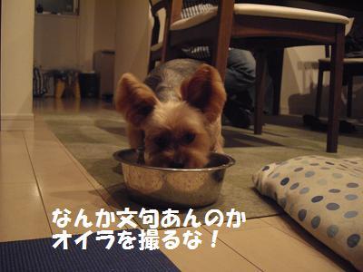 ミニーの食べる