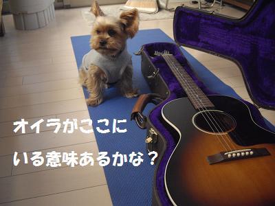 ギターとモカ