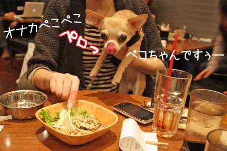 バースデー会5
