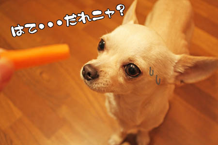ニンジンサーン7