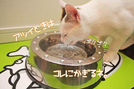 軟水好み3