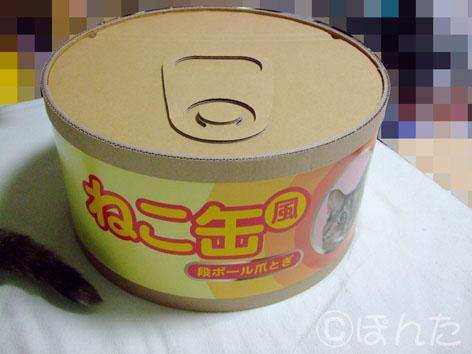 うに_ネコ缶2