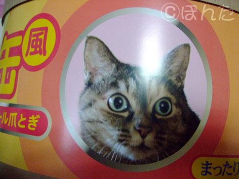 うに_ネコ缶8