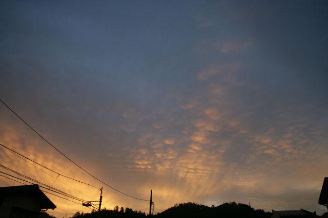 20051015_01_morning.jpg