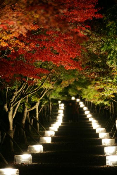 20051022_03_yoshida.jpg