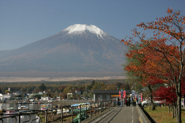 20051105_14_yamanaka.jpg