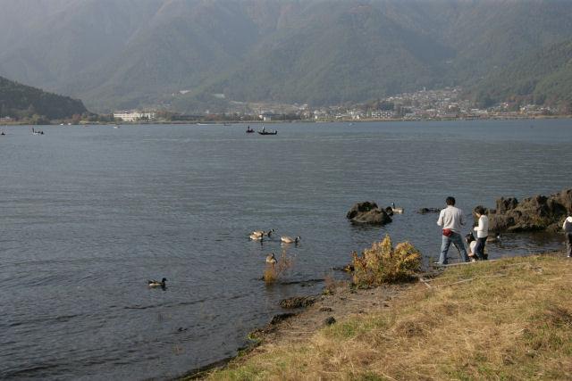 20051105_26_fujisaki.jpg