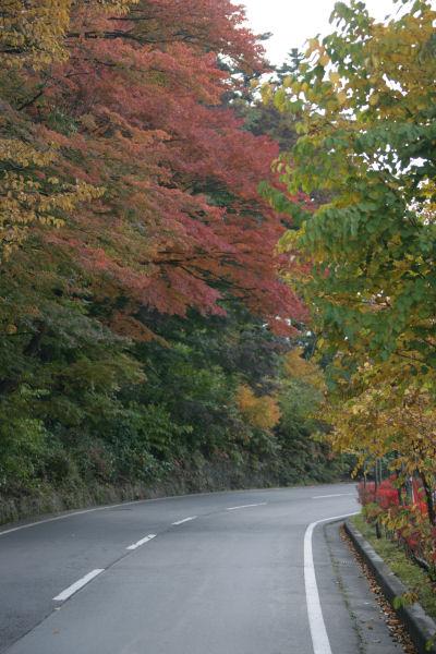 20051105_31_fujisaki.jpg