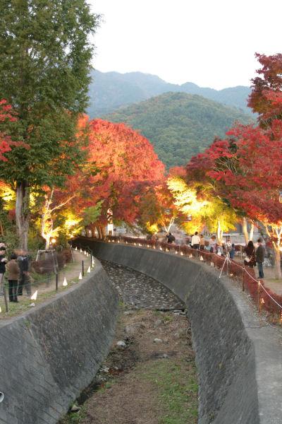 20051105_49_m-kairou.jpg