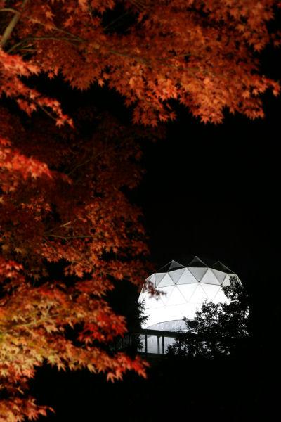 20051105_59_yoshida.jpg