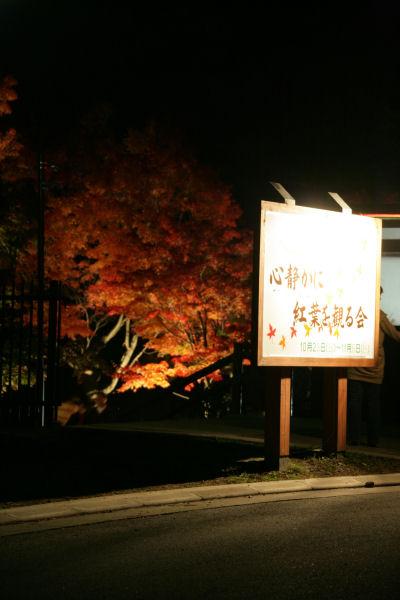20051105_64_yoshida.jpg
