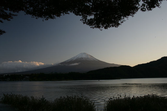 20051112_02_momiji.jpg