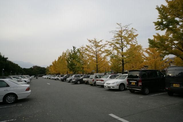 20051113_15_kenbi.jpg