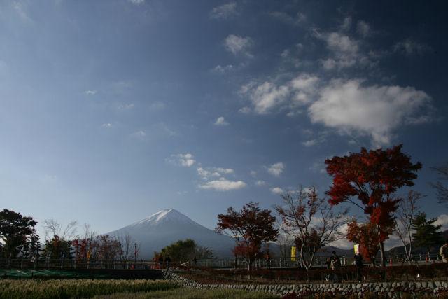 20051120_19_kairo.jpg