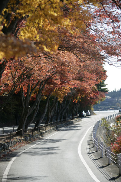 20051120_21_tunnel.jpg