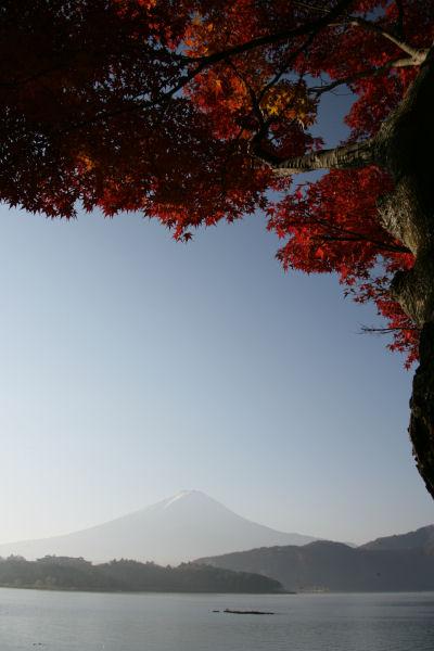 20051127_13_kawaguchi.jpg