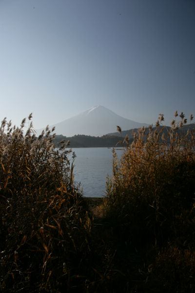 20051127_14_kawaguchi.jpg
