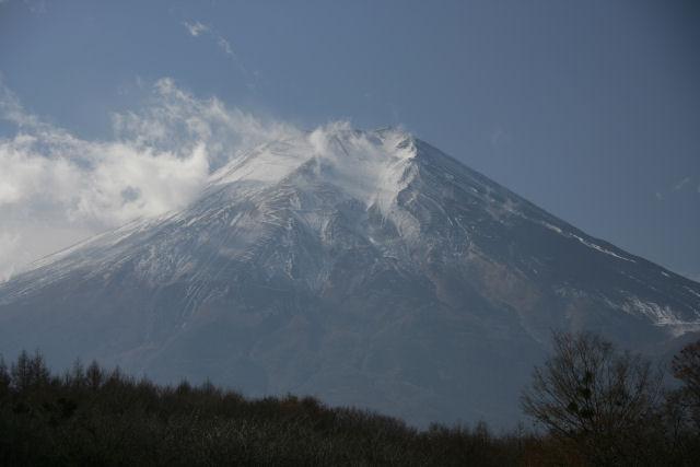 20051203_15_oshino.jpg