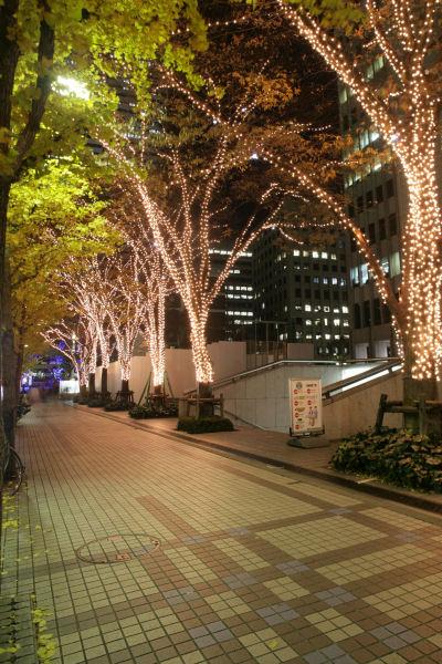 20051210_15_nomura.jpg