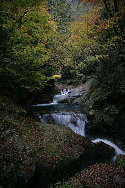 2005_01_nishizawa.jpg