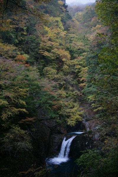 2005_03_nishizawa.jpg