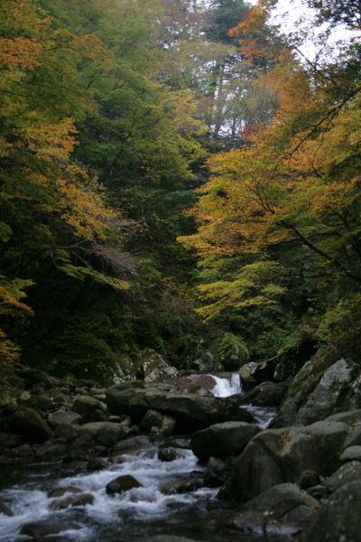 2005_06_nishizawa.jpg
