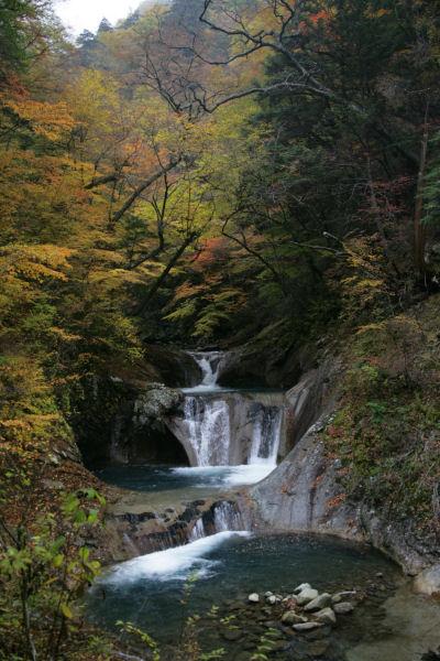 2005_08_nishizawa.jpg