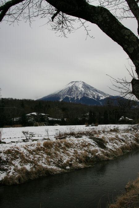 20060104_10_oshino.jpg