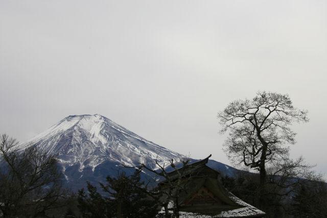 20060104_13_oshino.jpg