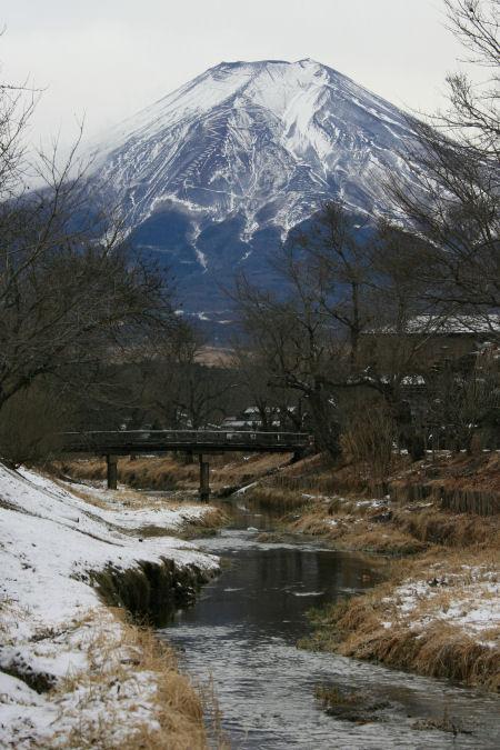 20060104_17_oshino.jpg