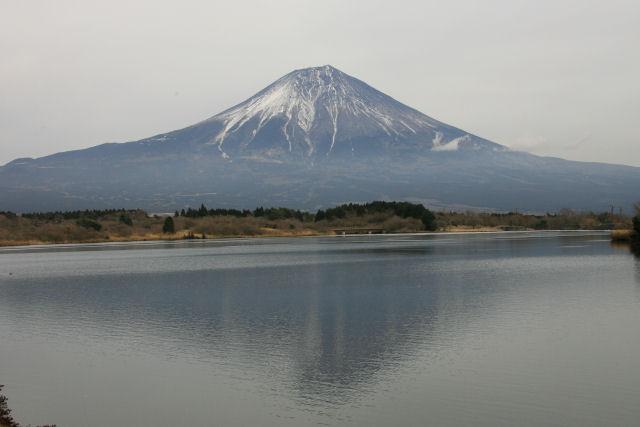 20060104_25_tanuki.jpg