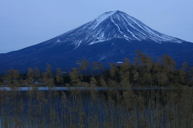 20060104_30_kawaguchi.jpg