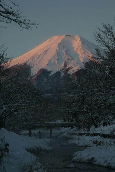 20060122_02_oshino.jpg
