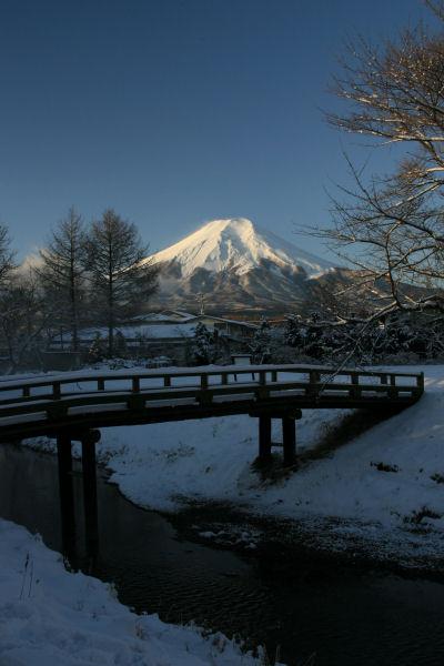 20060122_06_oshino.jpg