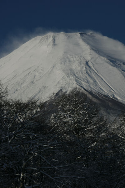 20060122_12_yamanaka.jpg