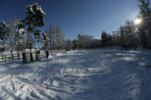 20060122_19_yamanaka.jpg