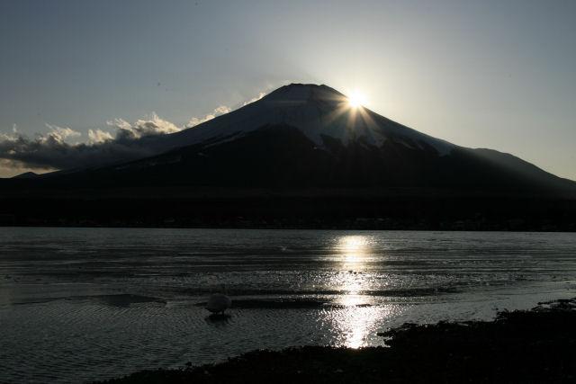20060205_03_yamanaka.jpg