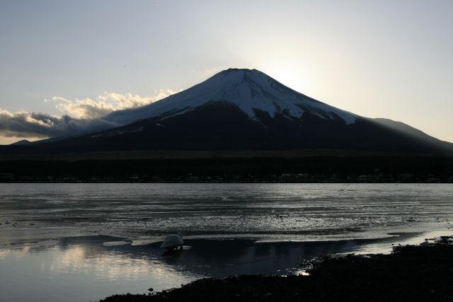 20060205_08_yamanaka.jpg