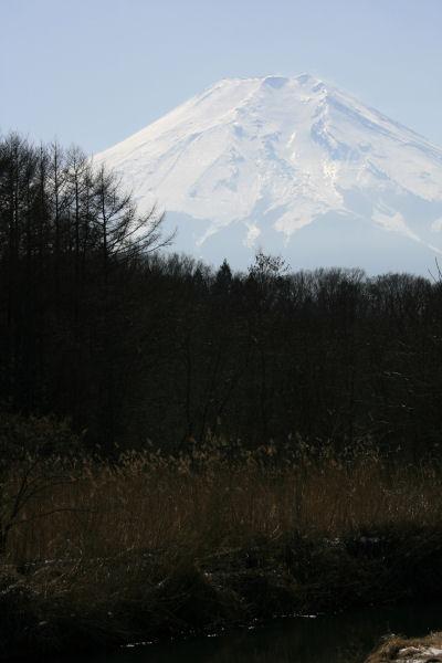 20060222_22_oshino.jpg
