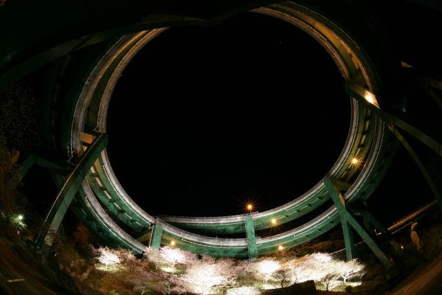 20060305_34_loop.jpg