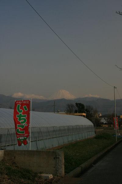 20060311_04_yamabushi.jpg