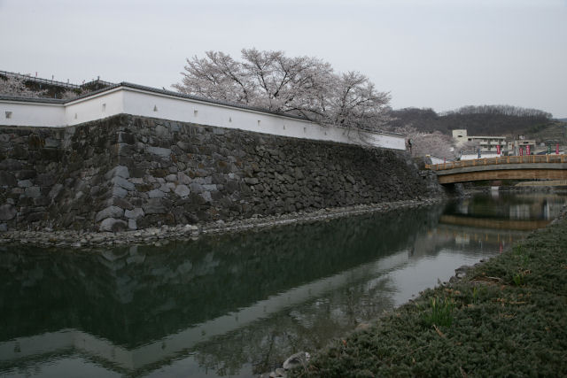 20060401_30_maizuru.jpg